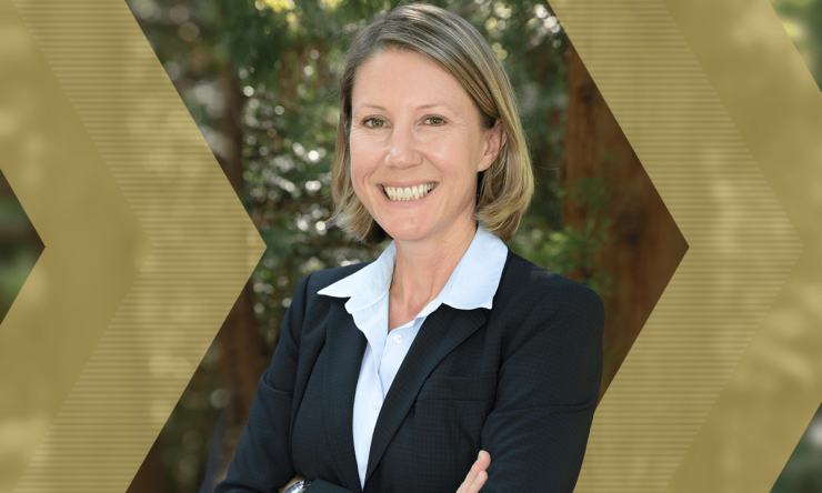 Krista Walton Named Interim Chair of the School of Chemical and Biomolecular Engineering